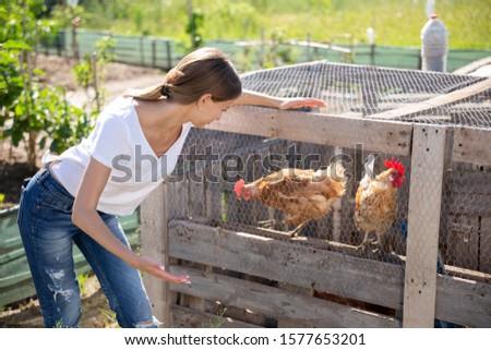 Farmer woman feeding chikens in a hen house #1577653201
