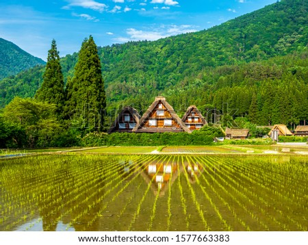 A flooded rice field and the Gassho-zukuri, an old local Japanese farmhouse and a mountain from behind in the Shirakawa-Go village in Japan #1577663383