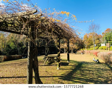 Outdoor park naturally illustrated by a pergola, table and benches made of natural wood. Images produced at outdoor park in Iga, Japan #1577721268