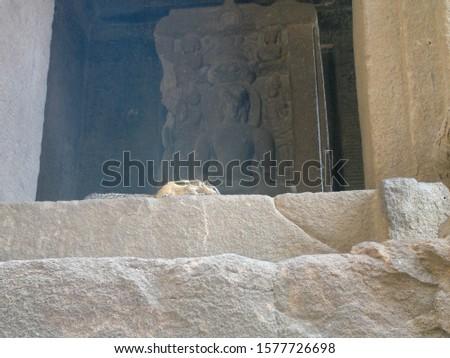 Beautiful Fort and caves of  ellora Cave temple at Aurangabad Maharashtra #1577726698
