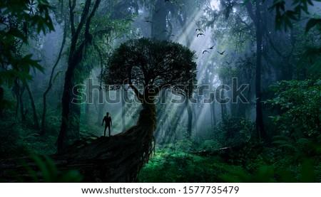 Explorer observing a jungle landscape Royalty-Free Stock Photo #1577735479
