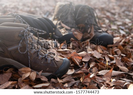 Hiking equipment. Hiking shoes with autumn leaves #1577744473