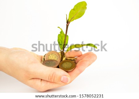 A man holds coins in his hands with which a small clover grows. A clover petal grows from a pot of money. Money tree on a white table. #1578052231