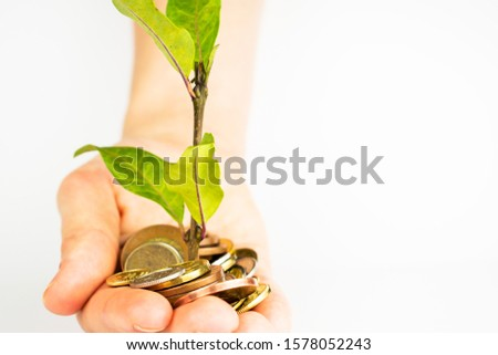 A man holds coins in his hands with which a small clover grows. A clover petal grows from a pot of money. Money tree on a white table. #1578052243