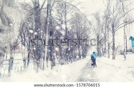 Winter forest landscape. Tall trees under snow cover. January frosty day in park. #1578706015