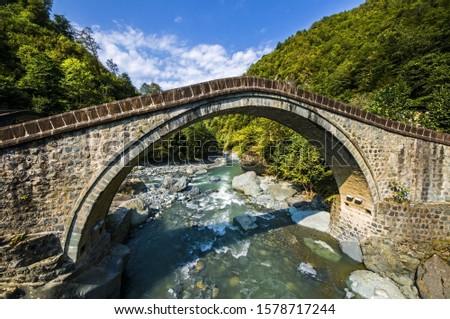 bridges old bridges historic bridges green nature water colorful çifteköprüler artvin turkey  #1578717244