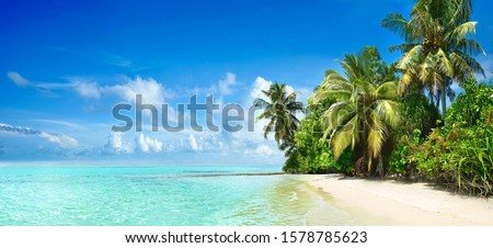 Beautiful tropical beach with white sand, palm trees,  turquoise ocean against blue sky with clouds on sunny summer day. Perfect landscape background for relaxing vacation, island of Maldives. #1578785623