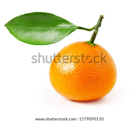 Tangerine or clementine with green leaf isolated on white background. One whole fruit. Design element #1579090150