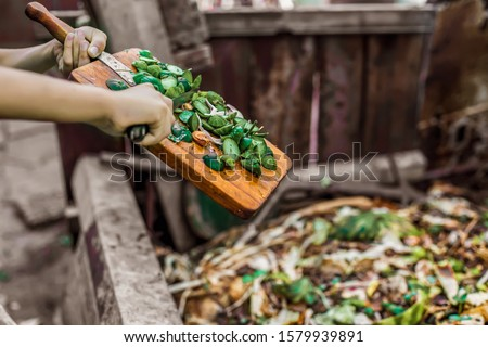 Responsible human (man, woman, kid, girl, guy) hands throwing away veg remains to the compost recycling container.  Ecology protection and reduce pollution concept. Food wastage as organic fertilizer #1579939891