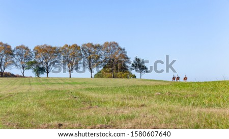 Horse riding three women riding their animals  late summer afternoon exercising social lifestyle countryside landscape #1580607640