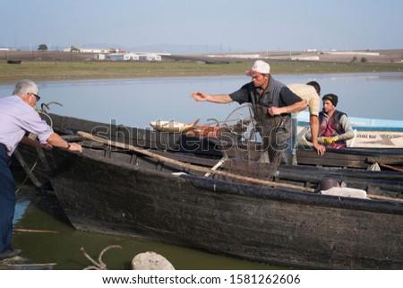 Bandirma, Balikesir / Turkey - November 9 / 2019 :  Fisherman throwing a big fish to another man while holding a net  #1581262606