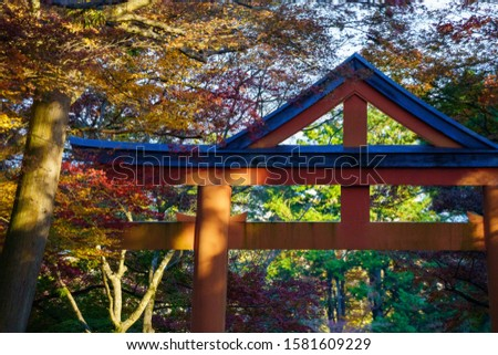 Autumn leaves and Sanno Torii. #1581609229