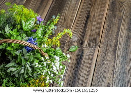 Fresh herbs from the garden on wooden table. Various herb in the basket. #1581651256