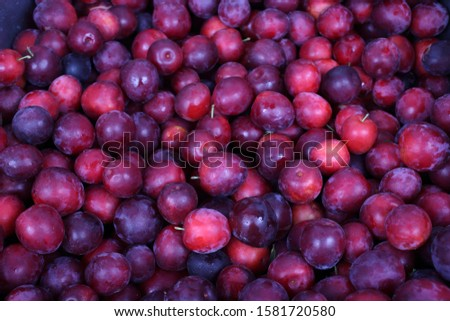 Red plums background. Fresh fruits #1581720580