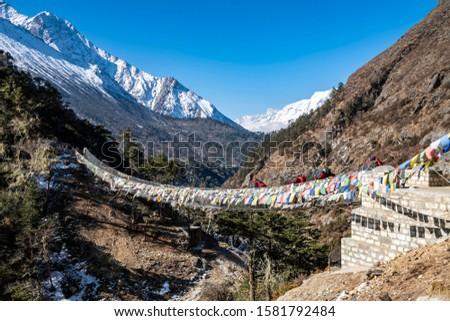 Yak and trekker on the way Everest Base Camp trek, Nepal Trek From Tengboche to Dingboche  , Nepal , Nepal #1581792484