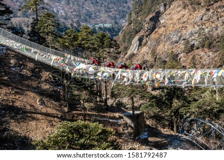 Yak and trekker on the way Everest Base Camp trek, Nepal Trek From Tengboche to Dingboche  , Nepal , Nepal #1581792487