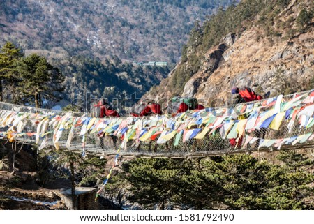 Yak and trekker on the way Everest Base Camp trek, Nepal Trek From Tengboche to Dingboche  , Nepal , Nepal #1581792490