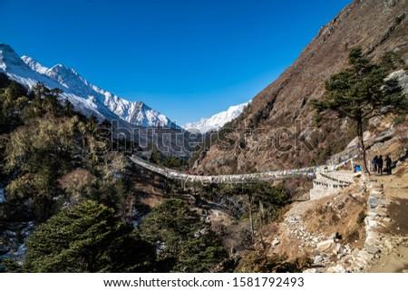 Yak and trekker on the way Everest Base Camp trek, Nepal Trek From Tengboche to Dingboche  , Nepal , Nepal #1581792493
