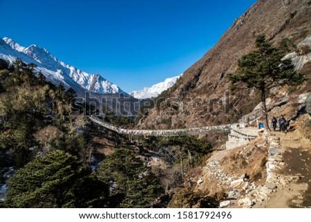 Yak and trekker on the way Everest Base Camp trek, Nepal Trek From Tengboche to Dingboche  , Nepal , Nepal #1581792496