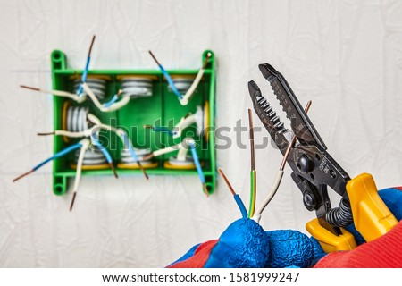 Ends of exposed copper wires protruding out junction box in the stage of installation. An Electrician cutters part of wire with use cutter tool. Repair and upgrade of electrical house wiring. #1581999247