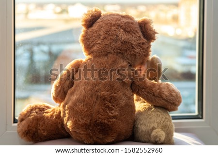 Best friends teddy bear and bunny toy sitting on window sill hugging each other and looking out of window. Love, family and friendship concept. stay at home, safe, quarantine #1582552960