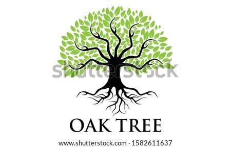 Green Creative Oak Tree Logo Design Symbol Illustration #1582611637