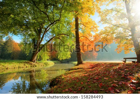 Rural autumn park view in beautiful color mood #158284493