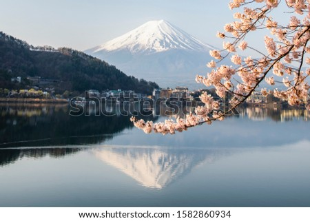 Sakura blooming with fuji mountan reflection at Kawaguchiko Lake in Spring, Japan #1582860934