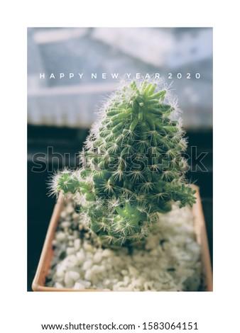 cactus New year greeting card #1583064151