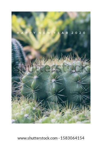cactus New year greeting card #1583064154