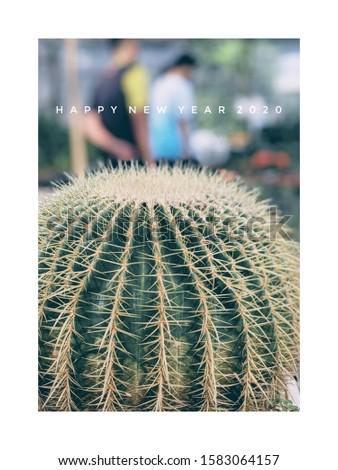 cactus New year greeting card #1583064157