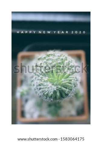 cactus New year greeting card #1583064175