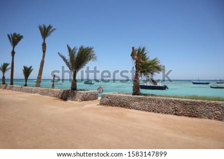 sunny days on sunny beach #1583147899