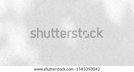 Background shadow and Nature shadows.Gray shadows trees leaf on white wall. Abstract shadows nature concept blurred background.White and Black.Texture shadows  #1583353042