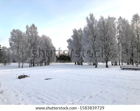 Snow, snow and again snow, Finland #1583839729