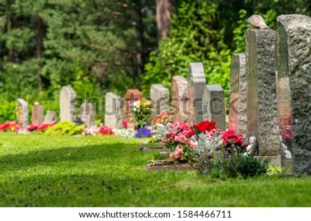 Curved row of tombstones with red and pink flowers on a beautiful and well cared cemetery in Sweden Royalty-Free Stock Photo #1584466711