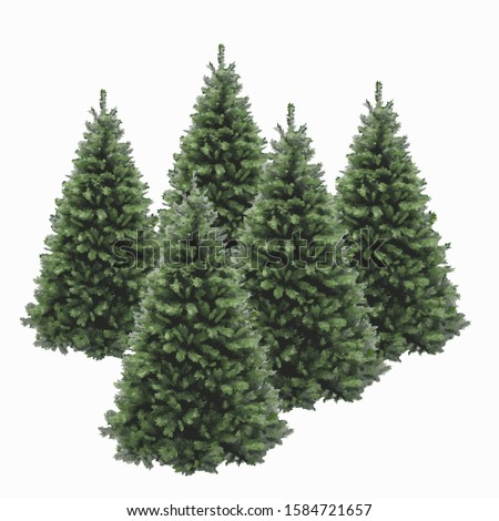 Christmas pine tree vector illustration isolated on white background. Realistic pine tree illustration. Vector element for creating your design and illustrations. Winter tree. #1584721657