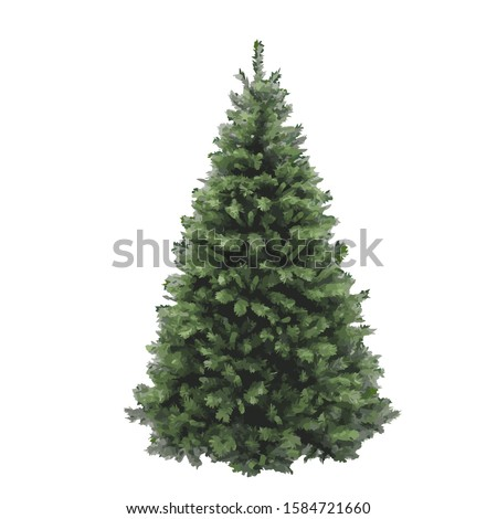 Christmas pine tree vector illustration isolated on white background. Realistic pine tree illustration. Vector element for creating your design and illustrations. Winter tree. #1584721660