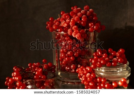 still life of red viburnum berries, apples and fruits close-up      #1585024057