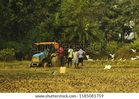 Some farmer ploughing a paddy field with a heavy powerful tractor. Some of them explaining how to plough and where to plough to the driver of the tractor. Vintage filter. #1585081759