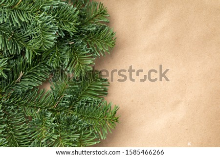 Spruce branch. Fir branch. A branch of an evergreen tree. Christmas background. New year background. Coniferous branches. Texture of coniferous branches. #1585466266