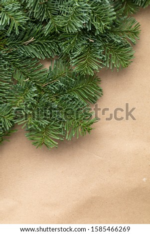 Spruce branch. Fir branch. A branch of an evergreen tree. Christmas background. New year background. Coniferous branches. Texture of coniferous branches. #1585466269