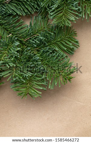 Spruce branch. Fir branch. A branch of an evergreen tree. Christmas background. New year background. Coniferous branches. Texture of coniferous branches. #1585466272