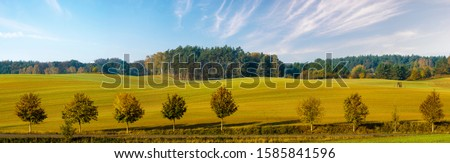 panorama of autumn rural landscape - green fields, trees in autumn colors #1585841596