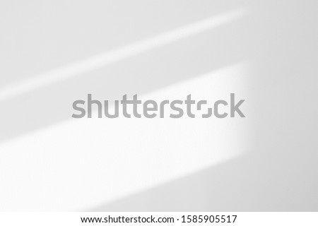 Organic drop diagonal shadow on a white wall. Overlay effect for photo, mock-ups, posters, stationary, wall art, design presentation #1585905517