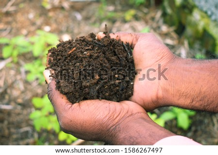 Farmer holding pile of vermicompost. Male agronomist showing compost manure. Can be use as fertilizer to accelerate the growth of plant in organic farming. Organic farming concept. agriculture backgro #1586267497
