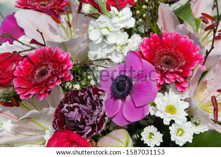Close-up of a bouquet of flowers #1587031153