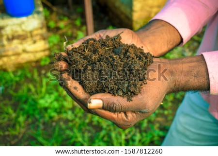 Farmer holding pile of vermicompost. Male agronomist showing compost manure. Can be use as fertilizer to accelerate the growth of plant in organic farming. Organic farming concept. agriculture backgro #1587812260