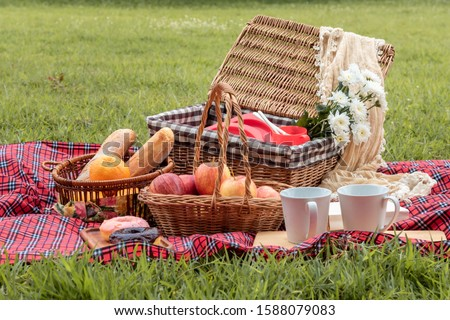 Summer time.Closeup of picnic basket with food and fruit  in nature. #1588079083