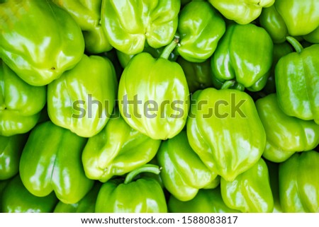 Green pepper. Background of green pepper. The texture of the pepper. Lots of pepper on the market. #1588083817